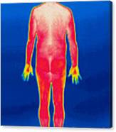 A Thermogram Of A Nude Man Back Canvas Print