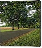 A Tree-lined Rural Virginia Road Canvas Print