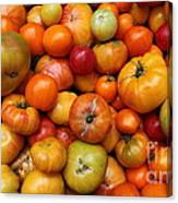 A Variety Of Fresh Tomatoes - 5d17812-long Canvas Print