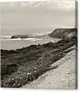 A View Central California Coast Canvas Print