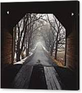A View Down A Tree-lined Road Canvas Print