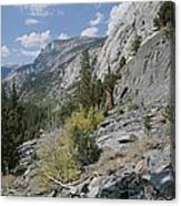A View Through Goddard Canyon Canvas Print
