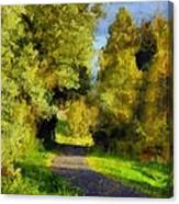 A Walk Amongst Nature Canvas Print
