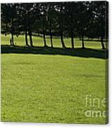 A Walk In The Park.. Canvas Print