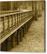 A Walk In Time Canvas Print