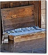 A Weathered Bench Canvas Print