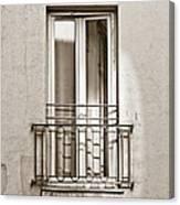A Window In Paris Canvas Print