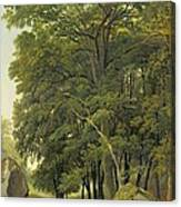 A Wooded Landscape  Canvas Print