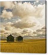 Abandoned Grain Bins With Hail Damaged Canvas Print
