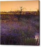 Abandoned Shack At Sunset Near A Creek Canvas Print