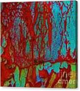 Abby Crack Canvas Print
