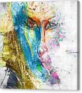 Abs 0063 Canvas Print