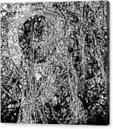 Abs 0284 Canvas Print