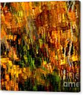 Abstract Babcock State Park Canvas Print