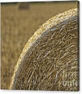 Abstract Bale Canvas Print