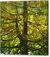 Abstract Foliage Canvas Print