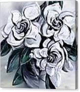 Abstract Gardenias Canvas Print