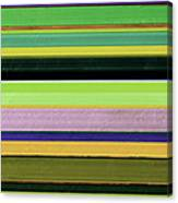 Abstract Landscape - The Highway Series Lll Canvas Print