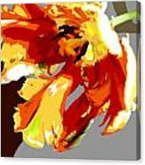 Abstract Parrot Tulip Canvas Print