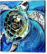 Abstract Sea Turtle In C Minor Canvas Print