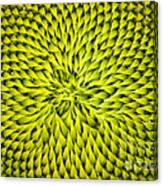 Abstract Sunflower Pattern Canvas Print
