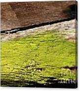 Abstract With Green Canvas Print