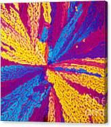 Acetylcholine Canvas Print