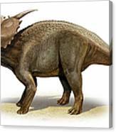 Achelousaurus Horneri, A Prehistoric Canvas Print