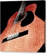 Acoustica Canvas Print