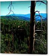 Across The Forested Mountains Canvas Print