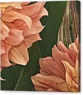 Adalee's Petals Canvas Print