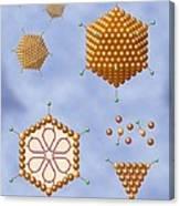 Adenovirus Structure, Artwork Canvas Print