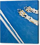 Adidas Canvas Print