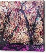 Afri-spiritus Sembler Canvas Print