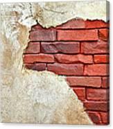 Africa In Bricks Canvas Print