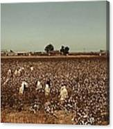 African American Day Laborers Picking Canvas Print