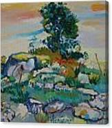 after Van Gogh 13 Canvas Print