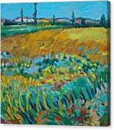 after Van Gogh 14 Canvas Print