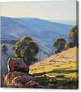 Afternoon Light Turon Hills Canvas Print