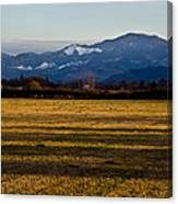 Afternoon Shadows Across A Rogue Valley Farm Canvas Print