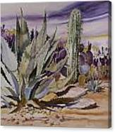 Agave And Purple Opuntia Canvas Print
