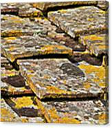 Aged Roof Tiles Of Tuscany Canvas Print