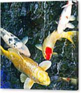 Air Koi 7608 Canvas Print