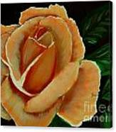 Airbrushed Coral Rose Canvas Print