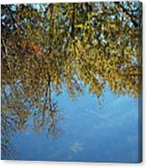 Airplane Reflections Canvas Print