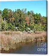 Alabama Bayou In Autumn Canvas Print