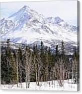Alaska Range Peak Canvas Print