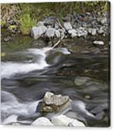 Alaskan Brook Canvas Print