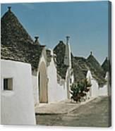 Alborebello  Canvas Print