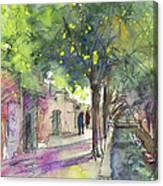 Albufera De Valencia 17 Canvas Print